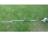 Echo Japanese quality long reach hedge cutter