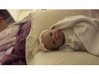 ashton drake baby reborn doll