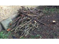Free fire wood - different sizes (must collect asap)