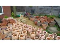 Garden pots and herb planters
