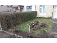 brian ground and garden services