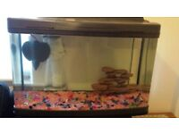 130 litre fish tank very good condition with stand