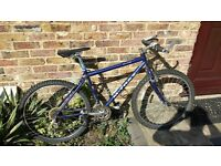 Raleigh m trax 2000