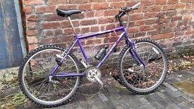 Raleigh mountain bike in perfect working order