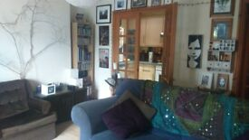Mannamead - one bedroom flat with south facing private patio