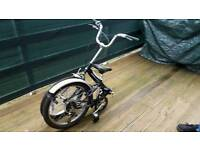 Adult Flex Challenge Folding Bike