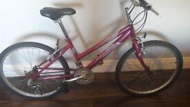 "Raleigh Kobo 24"" Bicycle"