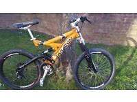 Saracen havoc mountain bike