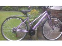 Ladies hybrid bike.