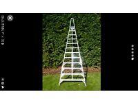 3 metre tripod ladder £160 ONO
