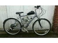 Saracen petrol and pedal alloy townbike