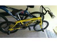 Pugfish BMX bike