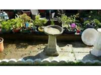 Weathered concrete bird bath