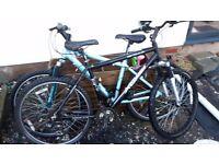 """2 apollo mountain bikes 1 mens 20"""" and one womens 17"""""""