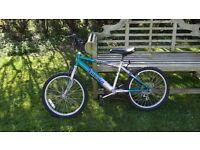 Ammaco Child's Mountain Bike