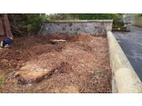 Free mulch - bring your own container