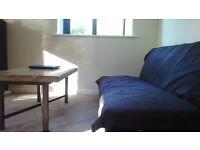 Lovely 2 Bedroom Flat for rent near Coate Water Park
