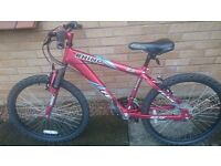 I am selling a.24 inch bike, the.bike.is.in excellent condition and has hardly been.used