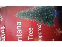 7ft Montana christmas tree