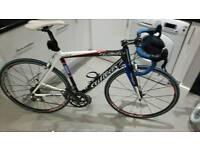 Wilier lampra carbon road bike