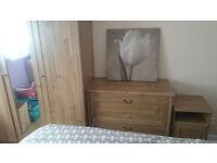 Beautiful bedroom furniture set +Leather mirror