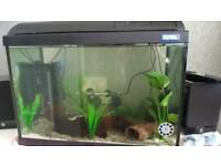 Great offer fluval aquarium with heater led lighting and coral sand.
