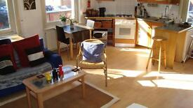 Fantastic Sunny Fulham Studio