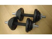 20 kg iron dumbbells