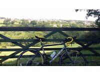 Carrera tdf men's road bike (54cm frame, carbon fork)