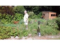 Garden Allotment for rent includes Greenhouse - Farnham, Surrey