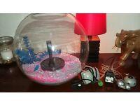 orb coldwater aquarium starter kit