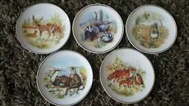 Wildlife Britain set decorative plates