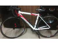 Wilier (triestina) road bike