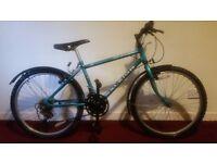 "Raleigh Ascender Boy's Mountain Bike 13"" Frame"