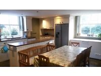 Single room BD9 £50 wk / £200 monthly all bills and wifi included
