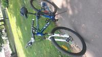 29 in. mountain bike