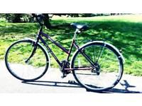 stolen bike Ralleigh
