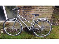 Women Ridgeback Velocity 17in bike very good state