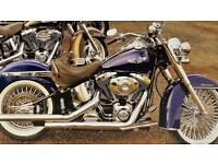 Immaculate Harley Davidson FLSTNI Softail Deluxe