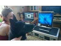 Dogs needed for eye-tracking study