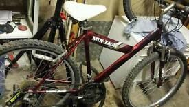 Mens magma bike