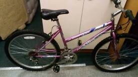 Mountain bike adults very good condition