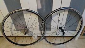 Brand new Campagnolo Khamsin wheelset brand new never used