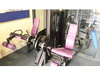 Pulse Fitness Leg Extension & Leg Curl Machine