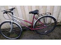 TOWN-BIKE BELMONT CONCEPT TOWN-BIKE 12 SPEED 700 CC WHEELS AVAILABLE FOR SALE