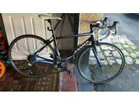 Jamis road bike carbon