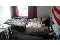 Nice and cosy room in friendly and quiet flat close to London Bridge and Canary Wharf zone 2