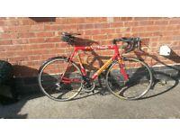cannondale cadd 5 saeco team road bike