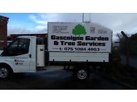 gascoigne garden and tree services fully insured ,qualified