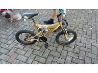 bike for a kid